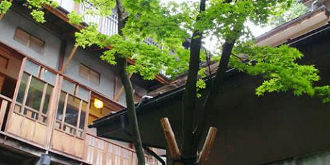 マツキドライビングスクール赤湯校:赤湯温泉 大文字屋(写真はイメージです)