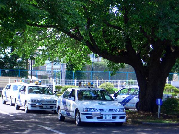 【合宿】普通車AT(所持免許なし)(写真はイメージです)