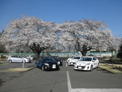 【春のキャンペーン】普通車AT…二輪免許所持(写真はイメージです)