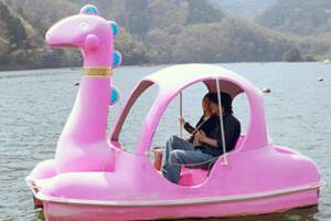 神奈川県・相模湖自動車教習所・レジャー