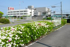 香川県・銀星自動車学園の紹介